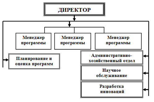 Организационная структура, ориентированная на продукт или программу